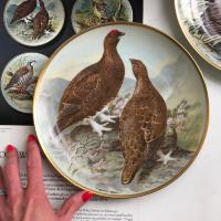 Тарелка Franklin Porcelain Gamebirds Limoges Red Grouse 1979 23 см